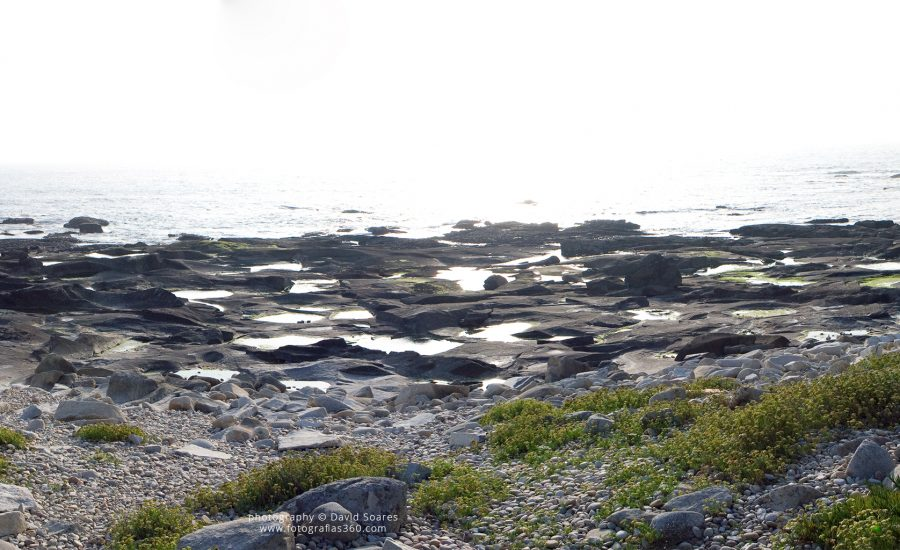 Camboas, Vila Praia de Âncora